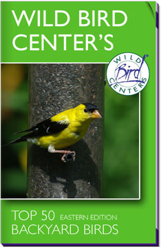 Wild Bird Center's Top 50 Eastern Backyard Birds